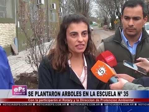 SE PLANTARON ARBOLES EN LA ESCUELA Nº 35