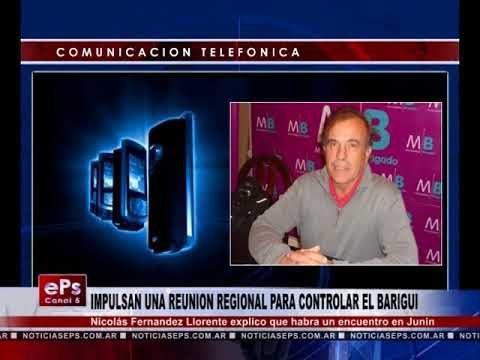 IMPULSAN UNA REUNION REGIONAL PARA CONTROLAR EL BARIGUI