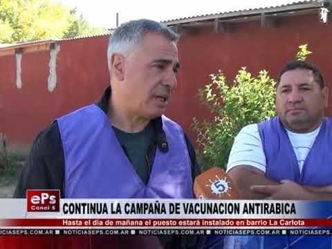 CONTINUA LA CAMPAÑA DE VACUNACION ANTIRABICA