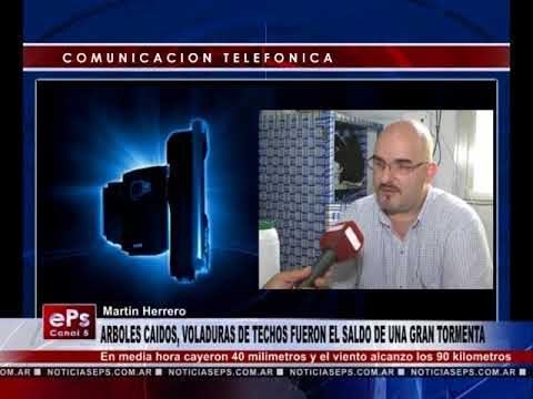 ARBOLES CAIDOS, VOLADURAS DE TECHOS FUERON EL SALDO DE UNA GRAN TORMENTA