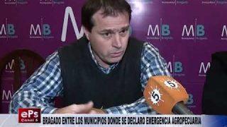 BRAGADO ENTRE LOS MUNICIPIOS DONDE SE DECLARO EMERGENCIA AGROPECUARIA