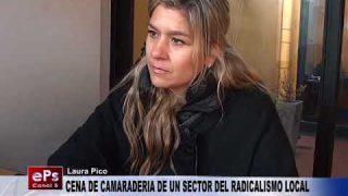 CENA DE CAMARADERIA DE UN SECTOR DEL RADICALISMO LOCAL