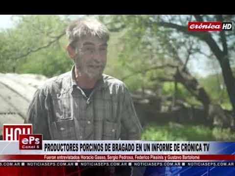 PRODUCTORES PORCINOS DE BRAGADO EN UN INFORME DE CRÓNICA TV