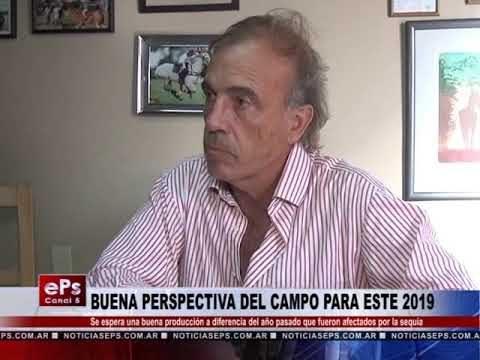 BUENA PERSPECTIVA DEL CAMPO PARA ESTE 2019