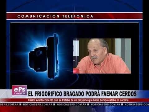 EL FRIGORIFICO BRAGADO PODRÁ FAENAR CERDOS