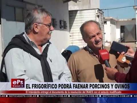 EL FRIGORÍFICO PODRÁ FAENAR PORCINOS Y OVINOS