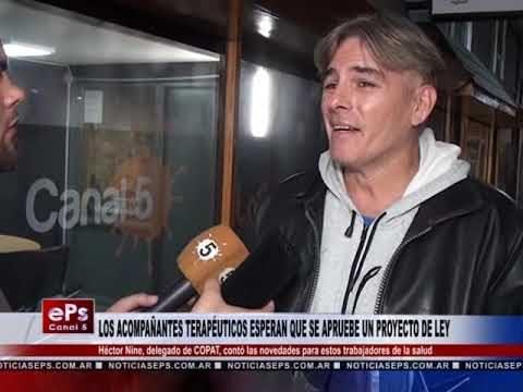 LOS ACOMPAÑANTES TERAPÉUTICOS ESPERAN QUE SE APRUEBE UN PROYECTO DE LEY