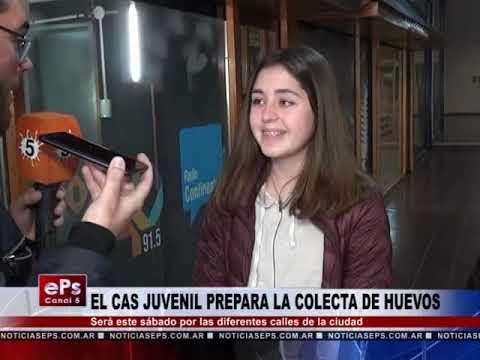 EL CAS JUVENIL PREPARA LA COLECTA DE HUEVOS