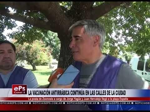LA VACUNACIÓN ANTIRRÁBICA CONTINÚA EN LAS CALLES DE LA CIUDAD