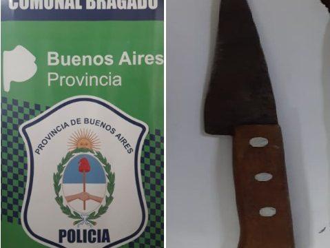 PARTE POLICIAL POR LESIONES CULPOSAS, APREHENSIÓN, HURTO, AMENAZAS Y DAÑO